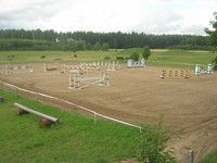 Okładka Albumu:  DRESSAGE JUMPING EVENTING SHOWS EXHIBITIONS & HORSE AUCTIONS