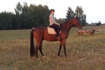 Kassai - YouTube1