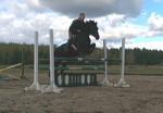 mare half-bred born: 21.02.2004 black height:167cm f.Elparxx /Parole Board xx m. Czara/Rubinsohn han