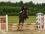 Celpa - YouTube2 Celpa  Show Jumping Jacek Krukowski