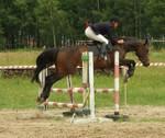 Celpa - YouTube1 Celpa  Show Jumping Jacek Krukowski